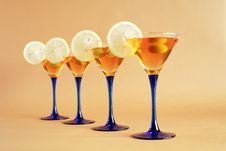 Free Cocktail Party Royalty Free Stock Photo - 20547585
