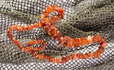 Free Amber Necklace Stock Images - 20548124