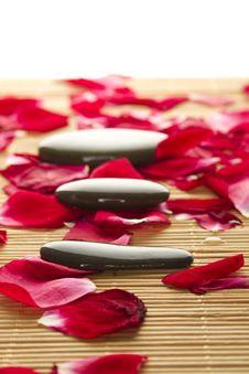 Free Spa And Wellness Stock Photo - 20548260