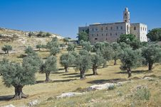 Free St. Elias Monastery (Jerusalem) Royalty Free Stock Photography - 20548397