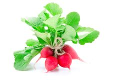 Free Bunch Of Fresh Radish With Leaves Stock Photos - 20548503