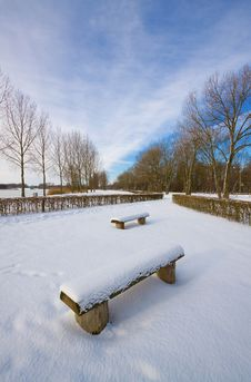 Free Benches In The Snow Stock Image - 20549671