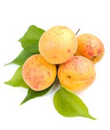 Free Apricots Stock Photos - 20549743