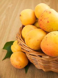 Free Apricots Royalty Free Stock Photos - 20549758
