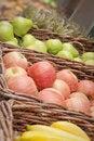 Free Fruits Royalty Free Stock Photo - 20551485
