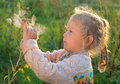 Free Girl With A Large Dandelion Royalty Free Stock Image - 20554446
