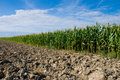 Free Plowed Field Royalty Free Stock Photography - 20556347