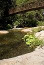 Free Bridge Over Stream Stock Images - 20556974