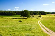 Free Road Leaving In The Field Royalty Free Stock Images - 20551569