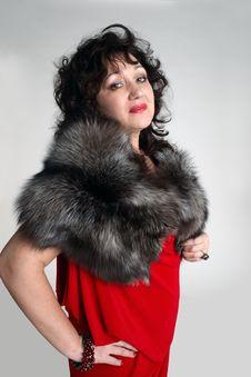 Free Fashion Female Looking Ahead Royalty Free Stock Photo - 20553515