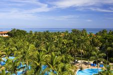 Free View On A Pool, Palms And Caribbean Sea Stock Image - 20554831