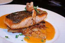 Free Salmon And Langusta Stock Photo - 20555740
