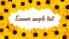 Free Decorative Sunflower Greeting Card Stock Photo - 20555810