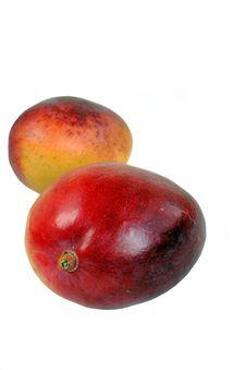 Free Mango Stock Images - 20558144