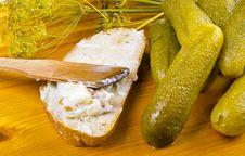 Free Polish Garlic Cucumbers Stock Photography - 20558872