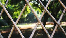 Free The Park Bamboo Fence Stock Photography - 20559332