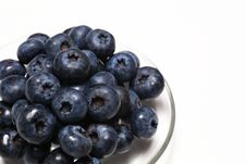 Free Blueberry Stock Photography - 20559462