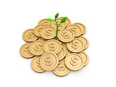 Free Gold Coins And Seedling Royalty Free Stock Photo - 20559775