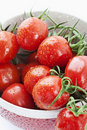 Free Tomatoes In A Bowl Stock Photography - 20568382