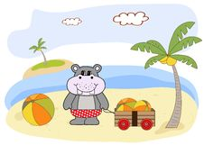 Free Hippo Plays On The Beach Royalty Free Stock Photography - 20560227