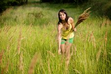 Free Young Woman In Yellow Clothes Enjoying Picking Wil Stock Photos - 20561363