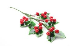 Branch Of Holly With Red Berries Stock Photos