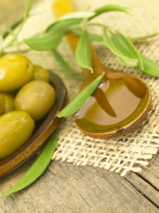 Free Olive Oil Stock Photo - 20564270