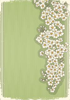 Free Flowers Grunge Postcard.Vintage Stock Images - 20564354