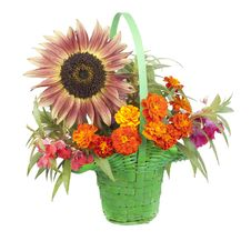 Free Bouquet Of Flowers With A Sunflower Stock Photos - 20564803