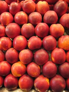 Free Peaches Royalty Free Stock Photography - 20566527