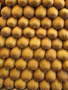 Free Kiwi Stock Images - 20566814