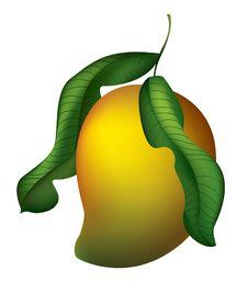 Free Juicy Mango Stock Photography - 20567002