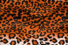 Leopard Background Royalty Free Stock Photo
