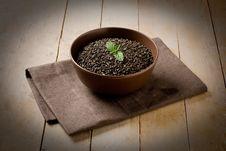 Free Raw Mint Tea Stock Photo - 20569200