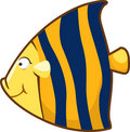 Free Vector Fish Illustration Stock Photos - 20574633