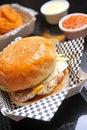 Free Hamburger Royalty Free Stock Photography - 20578607
