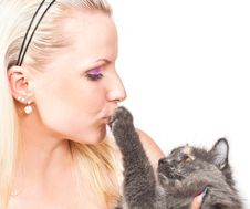 Free Blonde And Cat Stock Photography - 20570622
