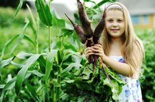 Free Girl With Beetroots Royalty Free Stock Photography - 20572127