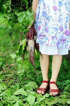 Free Girl With Beetroots Royalty Free Stock Image - 20572166