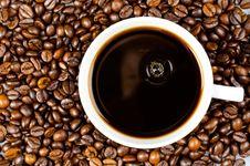 Free Taste Good Stock Photo - 20572470