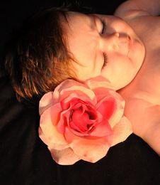 Free Baby Face Stock Photos - 20573813