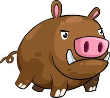 Free Boar Vector Stock Images - 20574684