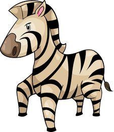 Free Zebra Vector Royalty Free Stock Photo - 20574715