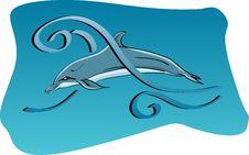 Free Dolphin Stock Photos - 20575113