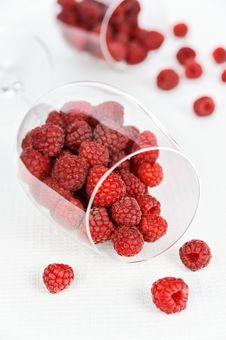 Free Raspberry Stock Photos - 20575463