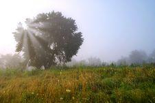 Free Autumn Landscape Stock Photos - 20576013