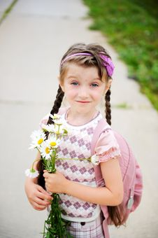 Free Young Girl With Pink Bagpack Ready For School Stock Images - 20576334
