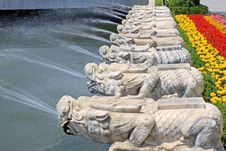 Free Stone Lions On The Streets Royalty Free Stock Image - 20576776