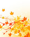 Free Autumn In Gold Stock Photography - 20582822