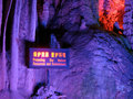 Free Stalactite With A Sign Board Saying Protect The En Royalty Free Stock Images - 20585149